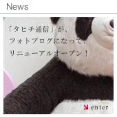「タヒチ通信」がフォトブログになってリニューアルオープン!